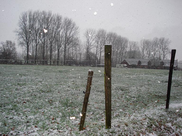 de eerste sneeuw 02