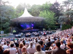richard thompson, olt, deurne, 2013, concert